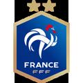 Logo équipe de France coupe du monde